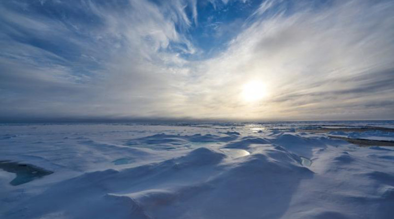 Melting ice in the Arctic Ocean is a bellwether for climate change, an apt illustration of environmental changes in a warming world. CREDIT: Photo courtesy of Zhangxian Ouyang
