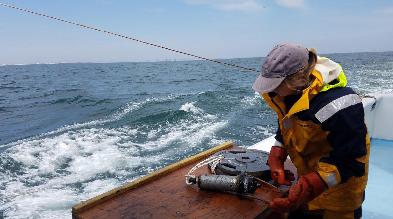 Researcher Ellie Rothermel configures an acoustic receiver off coast of Ocean City, Maryland, to monitor to the movement of Atlantic sturgeon and striped bass off the Delmarva coastline. CREDIT: University of Maryland Center for Environmental Science/Mike O'Brien
