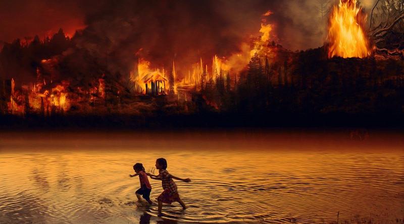 Brazil Fire Forest Fire Children Fear Flame Amazon