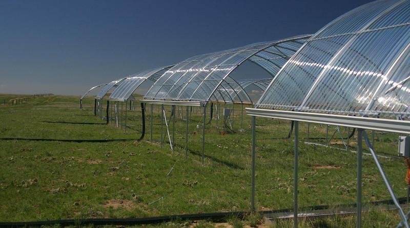 Experimental drought shelter near Hays, Kansas CREDIT: Alan Knapp