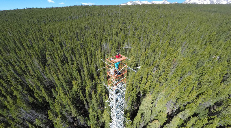 A tall tower with instruments to measure carbon dioxide and light at Niwot Ridge, Colorado. CREDIT: Christian Frankenberg