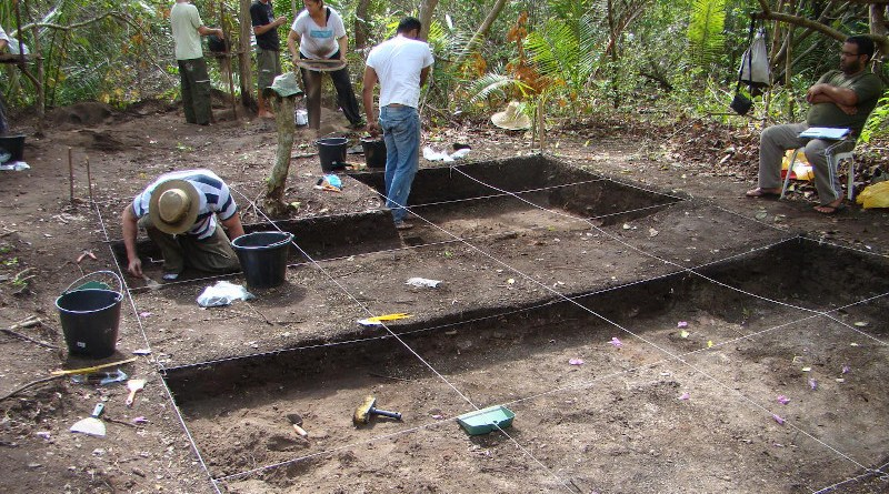The archaeological site of Bacanga at São Luís Island. CREDIT: André Colonese