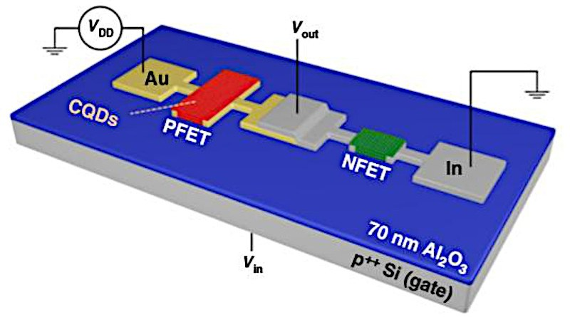 By depositing gold (Au) and Indium (In) contacts, researchers create two crucial types of quantum dot transistors on the same substrate, opening the door to a host of innovative electronics. CREDIT: Los Alamos National Laboratory/University of California, Irvine