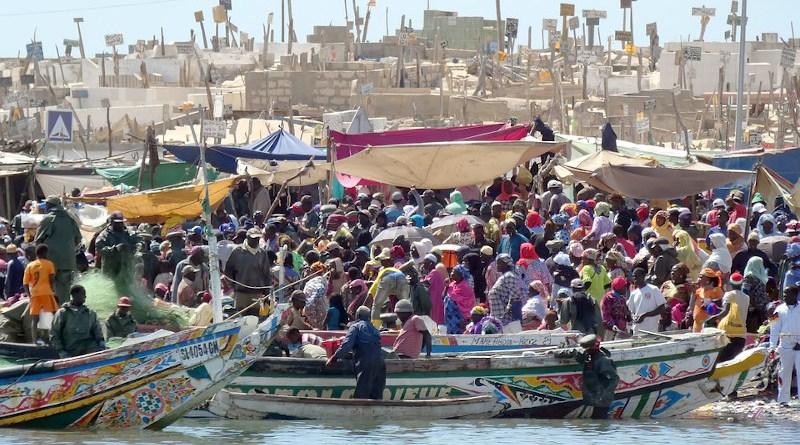 Senegal St Louis Market Fish Crowd Color Power