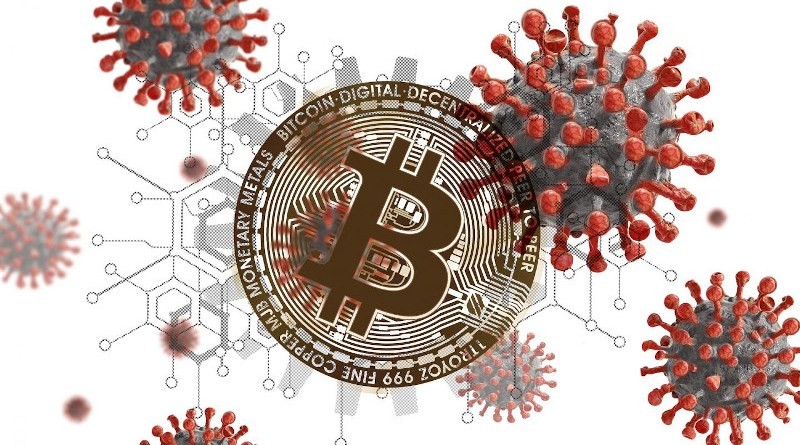 Cryptocurrencies have proven to be a safe financial haven during the COVID-19 pandemic. CREDIT: Gerd Altmann via Pixabay