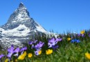 switzerland swiss alps Matterhorn Alpine Zermatt Mountains Gornergrat