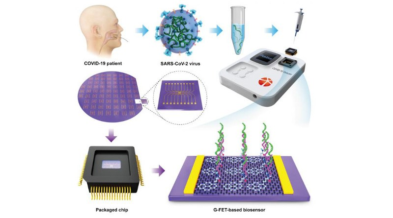 Top left: Extraction of viral RNA. Bottom left: From Si wafer to plug-and-play graphene packaged chips. Top right: Home-developed portable electrical detector. Bottom right: Illustration of the ss-DNA probe immobilization onto graphene using a typical PBASE linker, followed by hybridization with an RNA target. CREDIT @Science China Press