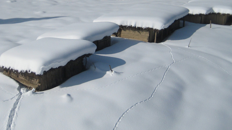Summer huts of nomad Gujjars in the upper reaches of Kashmir buried under snow. Photo Credit: Khalid Bashir Ahmad