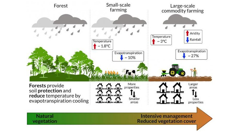 Deforestation and commodity farming activities leading to a warmer and drier local climate. CREDIT Eduardo Maeda
