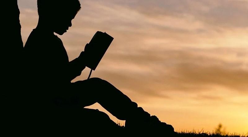 People Man Kid Boy Child Read Book Sunset