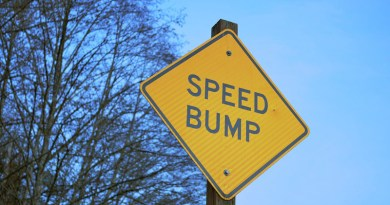 Sign Speed Bump Warning Speed Symbol Roadsign