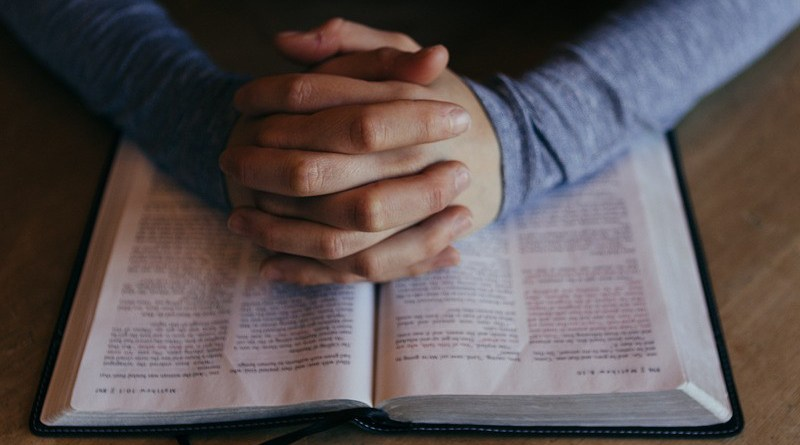 Pray Hands Bible Study Read Book Literature