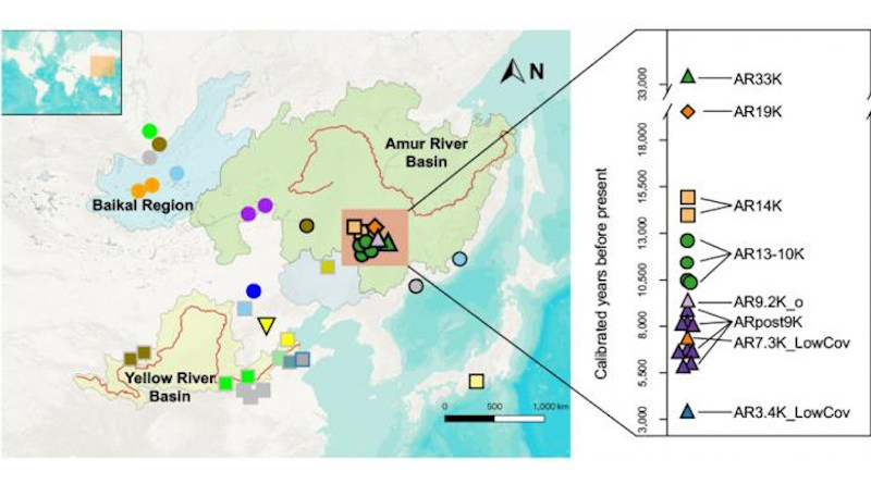 Geographic and temporal distribution and population structure of newly sampled and published populations in northern East Asia CREDIT Mao et al., 2021
