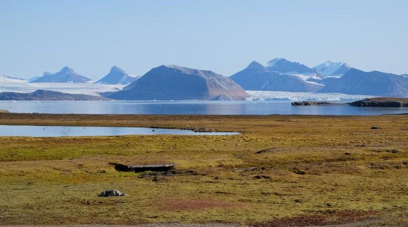 Arctic peatland in Svalbard CREDIT Angela Gallego-Sala