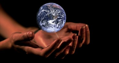 sustainability Hands Globe Earth Protection Planet World Global