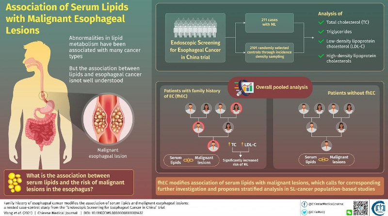 The association between serum lipids and risk of developing malignant esophageal lesions might be influenced by the status of esophageal cancer family history, scientists say. CREDIT Chinese Medical Journal