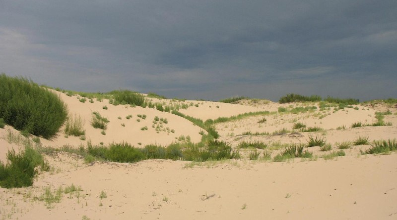 The degraded vegetation in the Horqin Sand Land in Inner Mongolia, China CREDIT Photo courtesy Lixin Wang, IUPUI