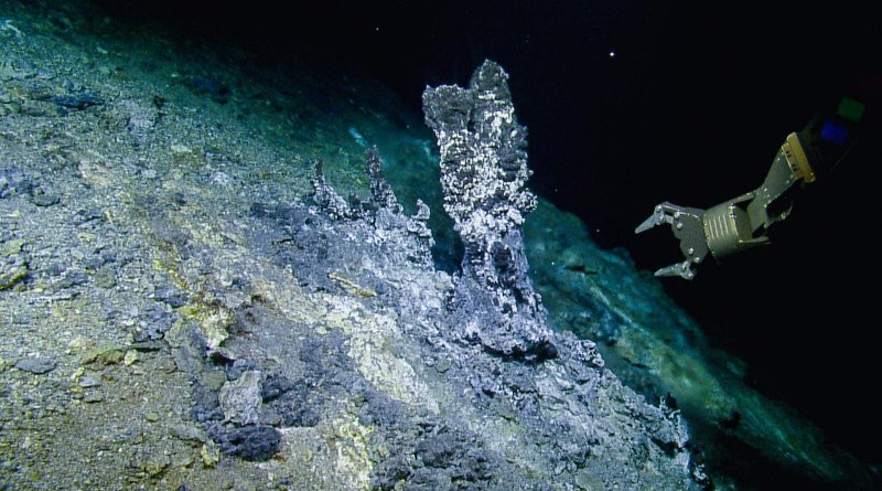 A view of the Apollo Vent Field at the northern Gorda Ridge, where samples were collected by the ROV Hercules for studying microbial predators CREDIT Image credit: OET/Nautilus Live