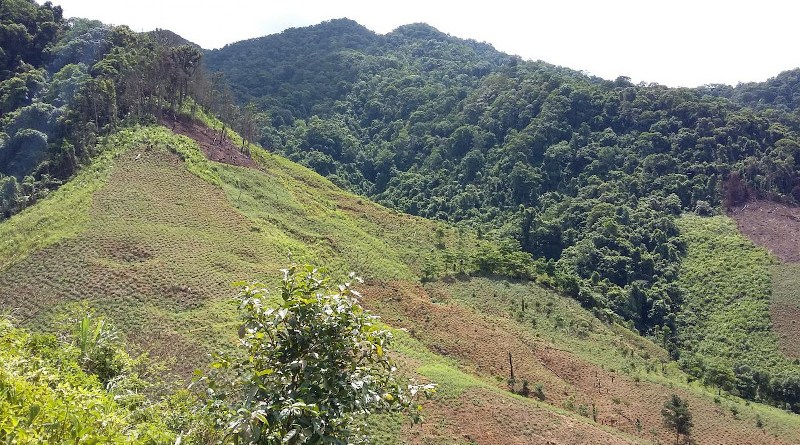 Forests cleared for agriculture on Vietnam mountains CREDIT Dominick Spracklen
