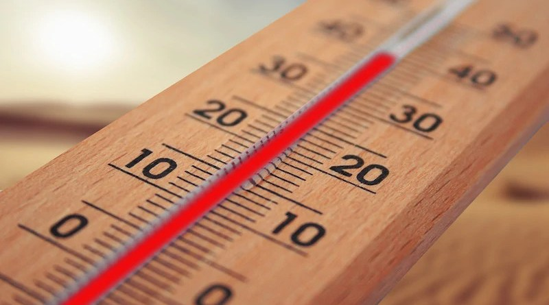 Extreme weather climate change thermometer Summer Heiss Heat Sun Temperature
