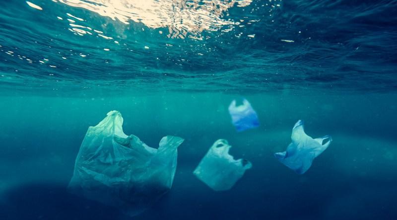 Plastic bags in sea. Photo Credit: Pixahive