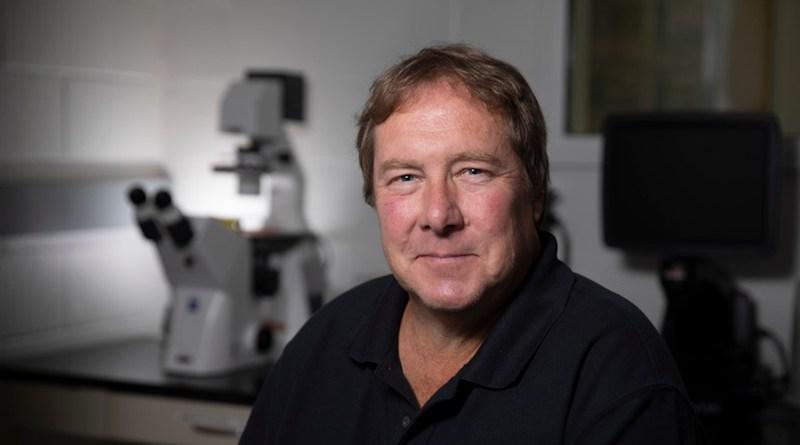 Ralph Tripp, GRA Eminent Scholar of Vaccine and Therapeutic Studies at the University of Georgia CREDIT: UGA