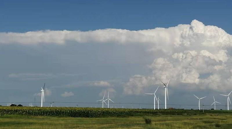 A large wind farm in Zhangjiakou, Hebei Province, China. CREDIT: Longxiang Dong