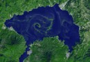 Lake Atitlán's algae bloom in 2009 as seen from space. Scientists who analyzed satellite images of some lakes across the world have found that algal blooms got worse as temperatures got warmer. Image by NASA's Terra satellite.