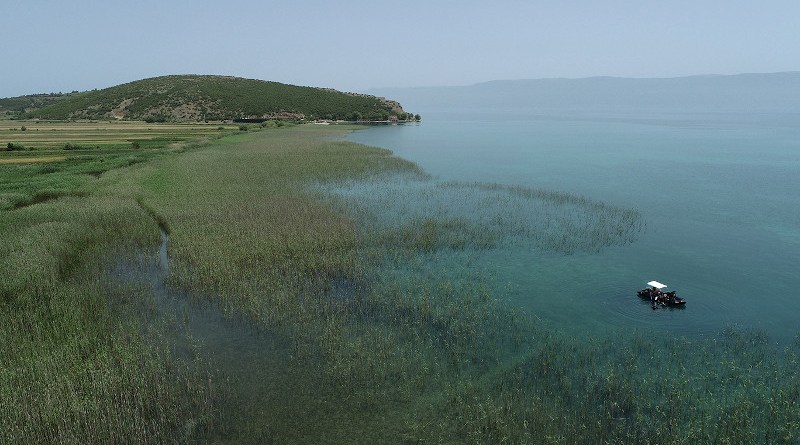Lin 3, Lake Ohrid, Albania. Excavation situation in summer 2021. © Johannes Reich