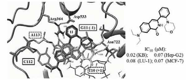 Synthesis and Anticancer Activity of 2-Aryl-6