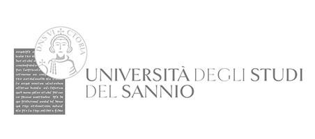Logo Partner Unisannio - università degli studi del Sannio