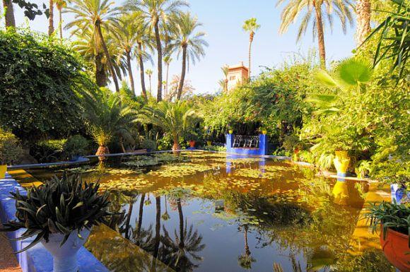 photo du jardin des Majorelle