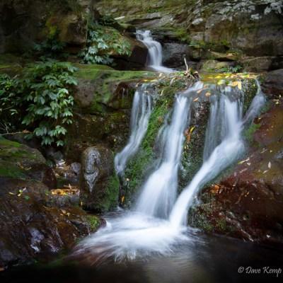 Minamurra River by Dave Kemp