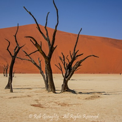 Namib by Rob Geraghty