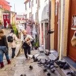 Imigrantes Estrangeiros: problema ou solução para o equilíbrio do Sistema Previdenciário Português?