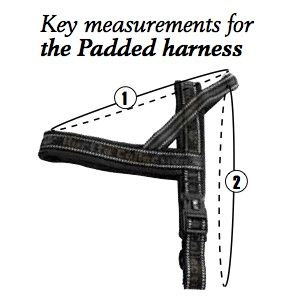 Comparing and Sizing Hurtta Harnesses