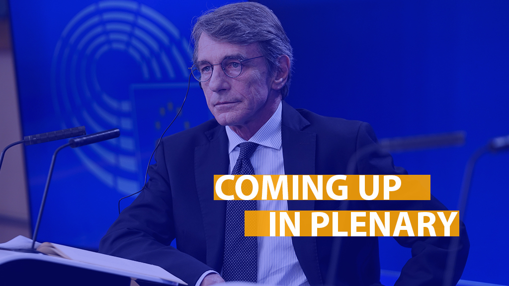 Coming up in plenary: digital services, farm policy reform, covid-19, Belarus | News | European Parliament
