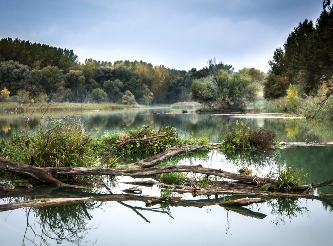 Many European lakes and rivers have water quality issues