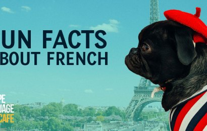 Fun facts about french banner