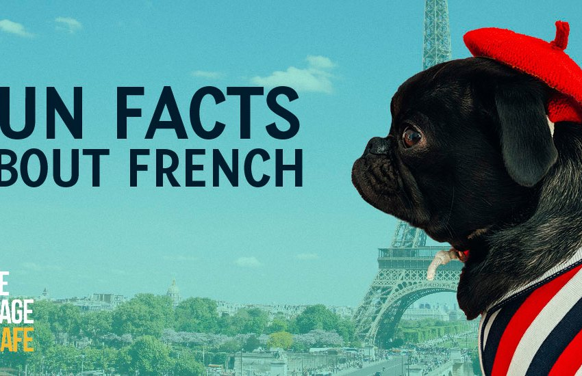 Fun Facts about French