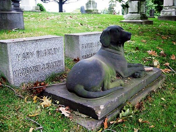 Risultato immagini per cementerio para perros