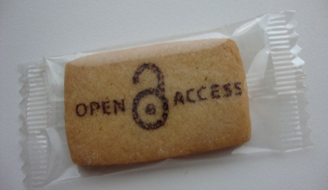 Challenges for learned societies in the transition to open access publishing