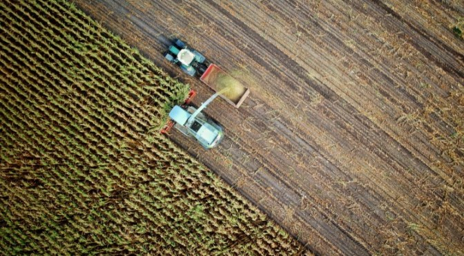 You Need to Understand the Relationship Between Agriculture and Climate Change