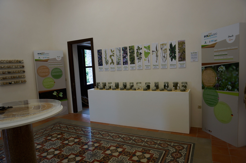 Museo-Dieta-Mediterranea-stanza