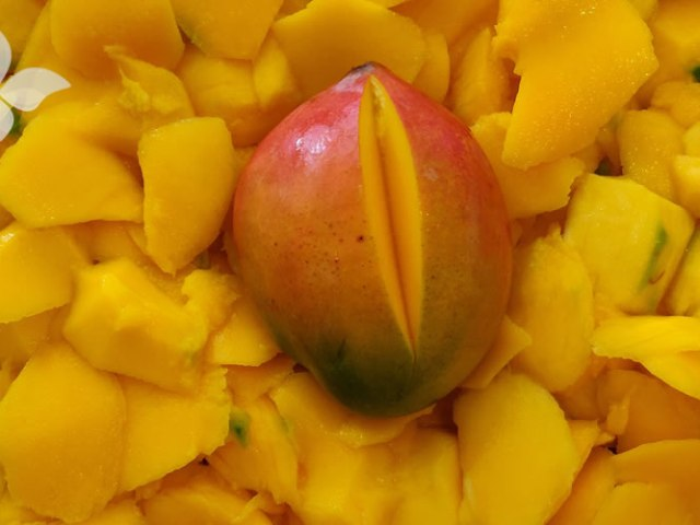 Euthalia Verzorging en Wellness Verse Mango