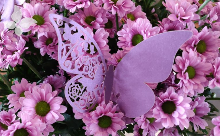 Euthalia Wellness Verzorging Vlinder Bloemen Euthalia Verzorging & Wellness