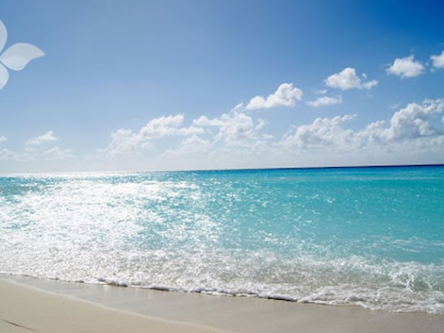 Euthalia Verzorging Wellness Zon Zee Strand