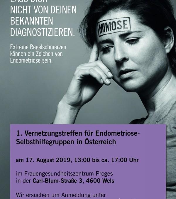 1.Vernetzungstreffen für Endometriose Selbsthilfegruppen in Österreich