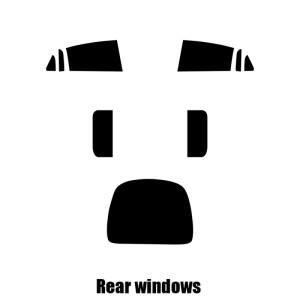 Model X Window Tints
