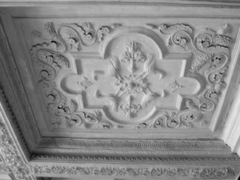 Tin Tiles And Plaster Ceilings Interior Design Inspiration Eva Designs